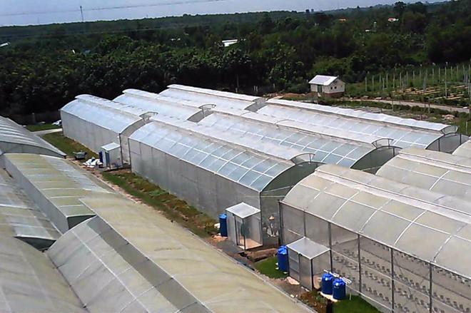 Lưới chắn côn trùng,lưới chắn côn trùng nông nghiệp, lưới chắn côn trùng nhà kính, lưới chắn côn trùng giá rẻ