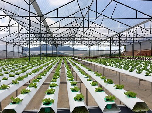 cung cấp nẹp nhà kính, nẹp cài màng nhà kính, thanh nẹp C và zic zăc nha kinh nông nghiệp