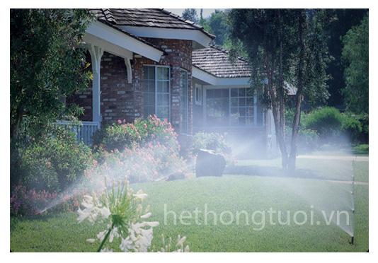 Hệ thống phun sương tưới cây - Giải pháp hay cho vườn cây nhà bạn ...