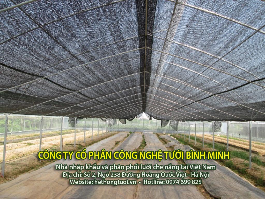 cung cấp lưới che nắng nhập khẩu thái lan, công ty phân phối lưới che nắng thai lan tại hà nội