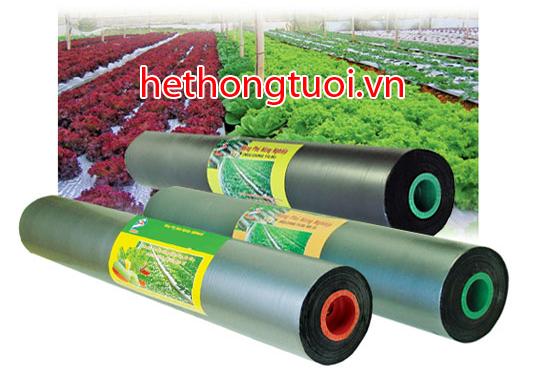 màng phủ nông nghiệp, màng phủ  0,8m x400,màng phủ 0,9m x400,màng phủ 1m x400