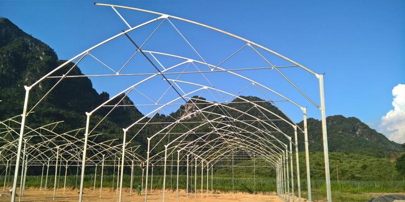 Các mô hình nhà lưới trồng rau hiện nay,lưới chắn côn trùng,lưới chống côn trùng nông nghiệp,luoi chan con trung,lươi chong con trung,nhà lưới, nha lươi, nhà lưới nông nghiệp, nhà lưới trồng rau,luoi chan con trung,bán lưới chắn côn trùng,